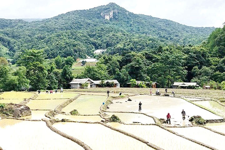 doi-inthanon-national-park5
