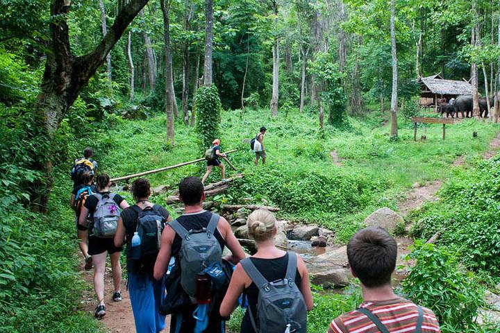 three-days-two-nights-trekking6