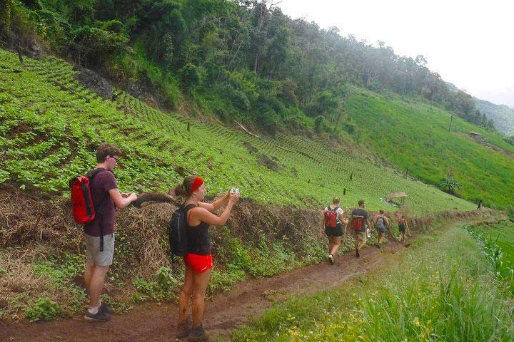 three-days-two-nights-trekking9