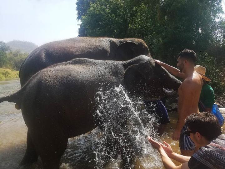 Elephant Explorers 13